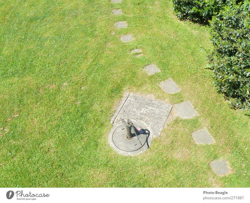 Green Sun Summer Meadow Warmth Grass Garden Park Beautiful weather Friendliness Hot Dry Hand pump Water pump