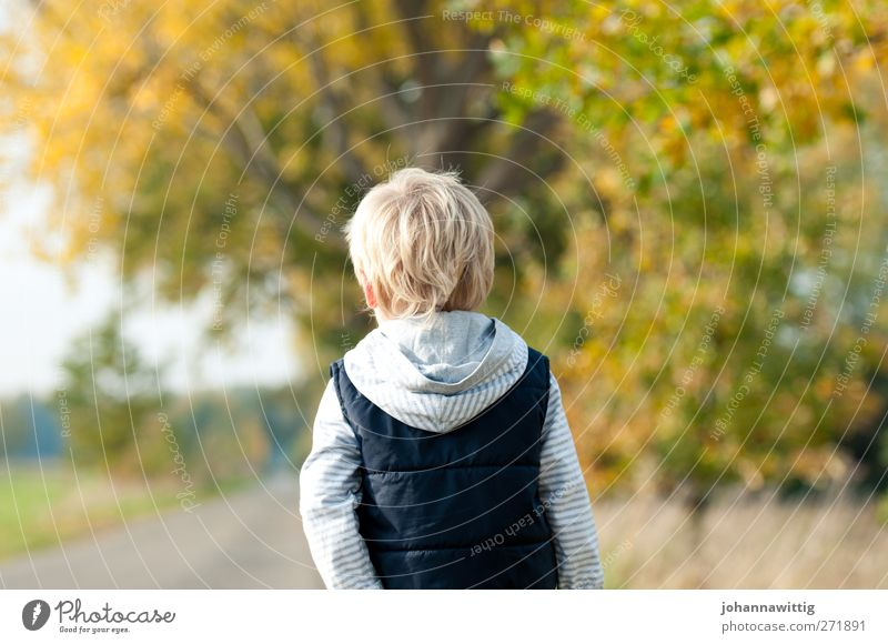Human being Child Nature Green Beautiful Tree Plant Loneliness Environment Autumn Grass Lanes & trails Orange Going Blonde Infancy