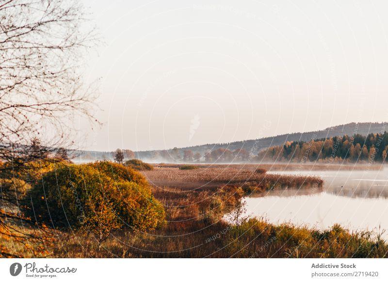 Morning fog drifting over lake Landscape Lake Autumn Haze Tourism Wonderful