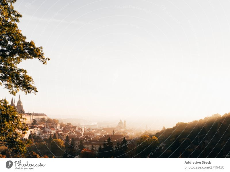 Morning haze above old city in autumn Skyline Haze Architecture Autumn City Destination Landscape Town Vacation & Travel Transport Perspective Atmosphere