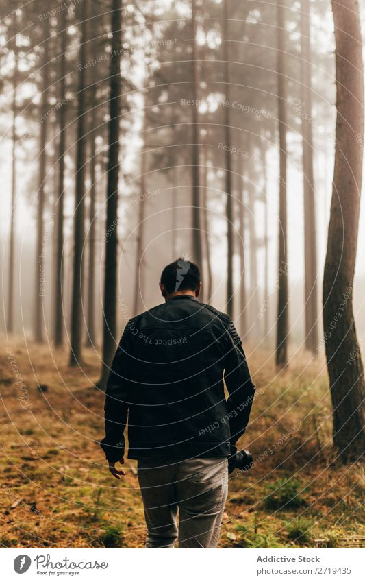 Traveler in dark foggy woods Forest Mysterious Landscape Spooky Background picture Fog Nature