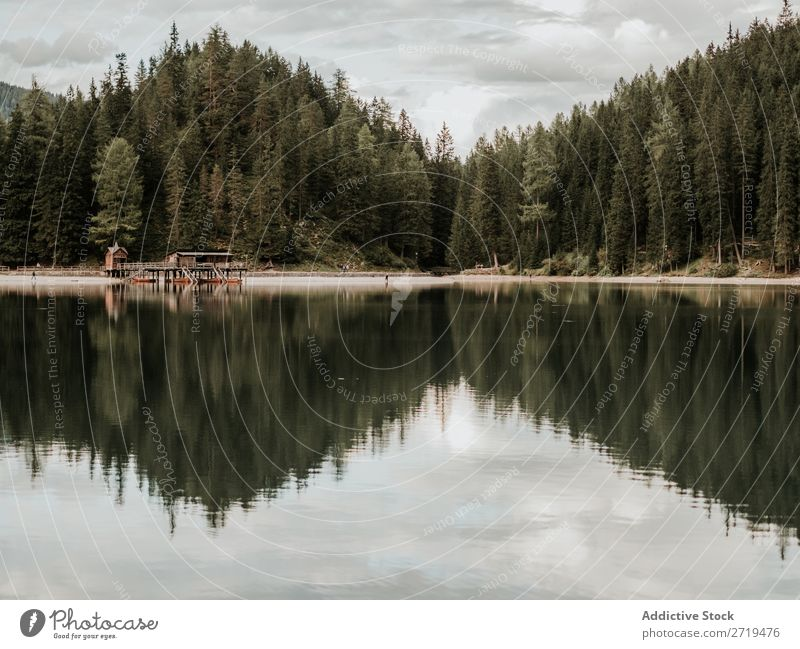 View of lake and forest Lake House (Residential Structure) Forest Dock Mountain Serene Wood