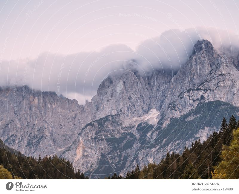 Picturesque view of rocky mountains Mountain coniferous Fog Landscape Rock Environment scenery atmospheric Haze Natural Forest Vacation & Travel Vantage point