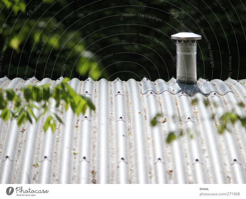 Leaf Metal Roof Idyll Protection Chimney Corrugated sheet iron