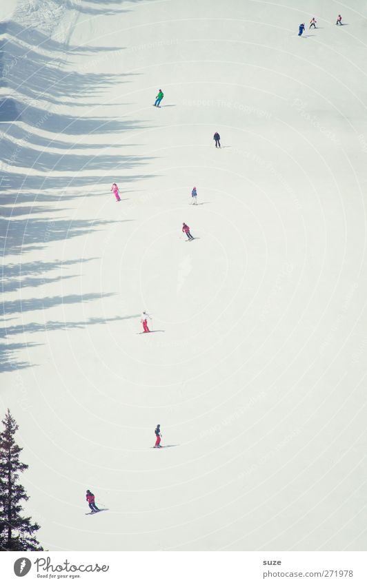 Schiii flag Vacation & Travel Tourism Winter vacation Winter sports Skiing Ski run Human being Crowd of people Environment Nature Landscape Elements Climate