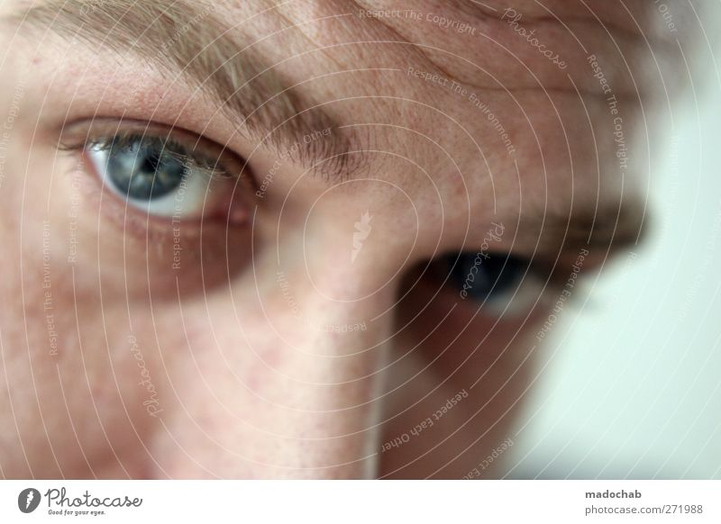 portrait young man eye contact Human being Masculine Man Adults Head Face Eyes Observe Trust Curiosity Looking Colour photo Interior shot Shallow depth of field