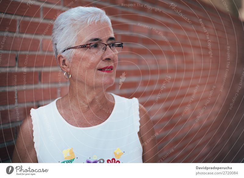 Aged woman looking away Woman grey hair Old Portrait photograph Beauty Photography retired Human being Senior citizen Relaxation Cute Attractive Horizontal