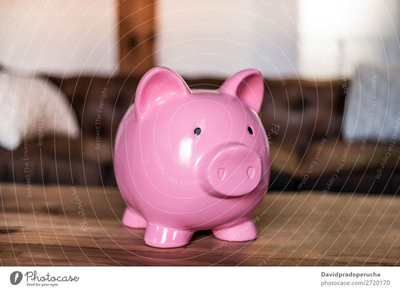 Pink saving piggy bank Money box savings Deposit investment fund earnings Economy Credit loan Financial Industry investing Safety (feeling of) Crisis Budget