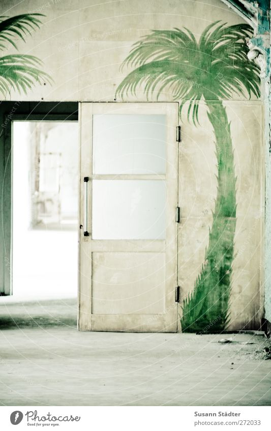 AST5 | la palma Sand Foliage plant Exotic Desert Oasis Gate Building Architecture Wall (barrier) Wall (building) Living or residing Door Palm tree Painted