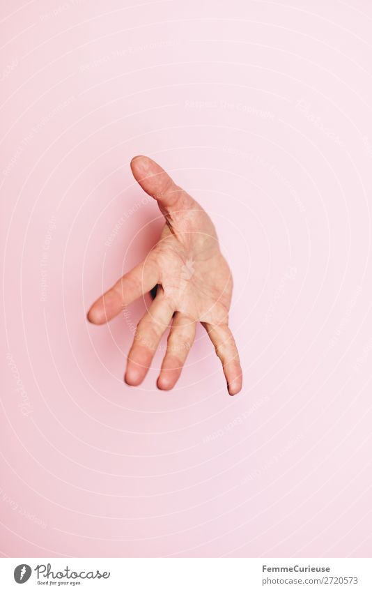 Outstretched hand of a woman Feminine 1 Human being Communicate Hide Watchfulness Splay Hand Pink Anonymous Concealed Colour photo Studio shot Copy Space left
