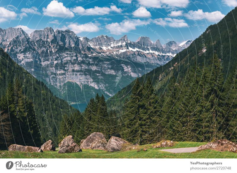 Mountain peaks with green forest and rocks in Swiss Alps Calm Summer Nature Landscape Beautiful weather Forest Peak Green Idyll Switzerland Alley Alpine