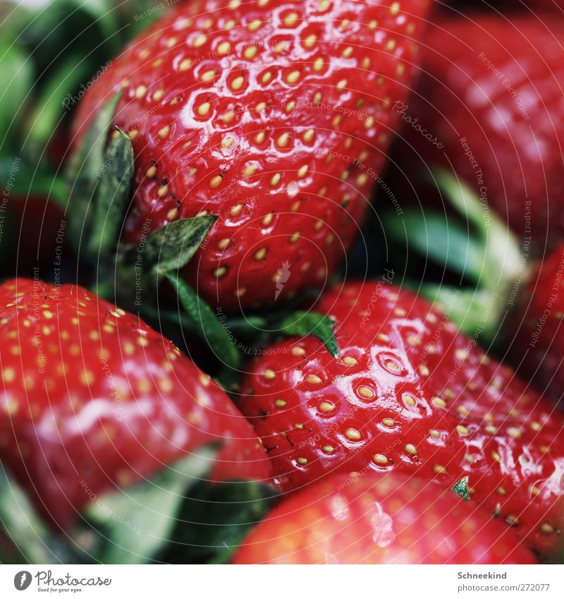 summer snack Food Fruit Nutrition Organic produce Nature Feeding Illuminate Strawberry Snack Summer Healthy Fresh Delicious Red Green Juicy Fruity Colour photo