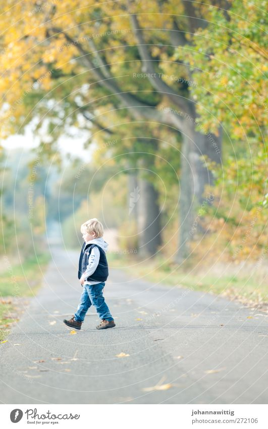 on the left Beautiful Life Playing Child Masculine Toddler Infancy 1 Human being 3 - 8 years Environment Nature Landscape Sun Autumn Beautiful weather Plant
