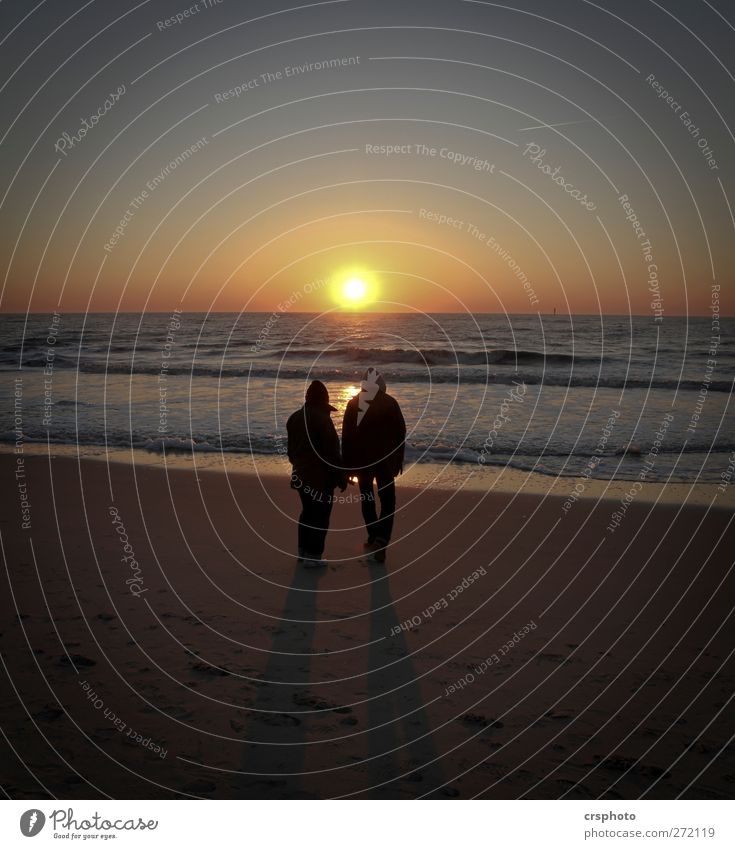 Lonesome couple... Ocean Couple Partner 2 Human being Water Sky Sunrise Sunset Coast North Sea Observe Relaxation Stand Dream Happy Trust Together Love
