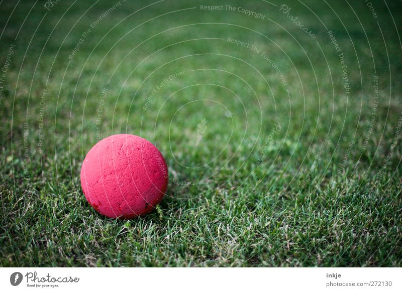 playground Leisure and hobbies Playing Children's game Ball Grass Deserted Lie Simple Round Green Red Vignetting Foam rubber Colour photo Exterior shot Close-up