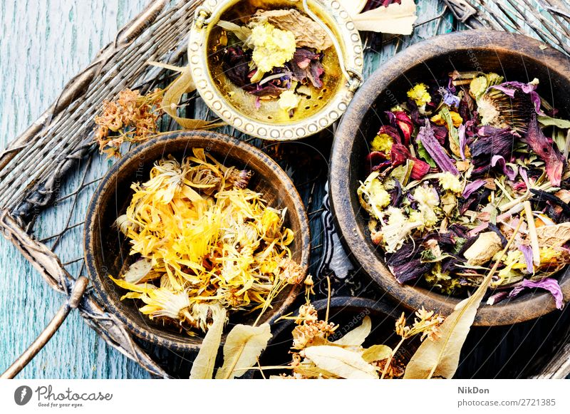 Herbs medicine flowers herb plant herbal natural alternative healthy aromatherapy wildflower herbalism herbal medicine basket treatment homeopathy healing
