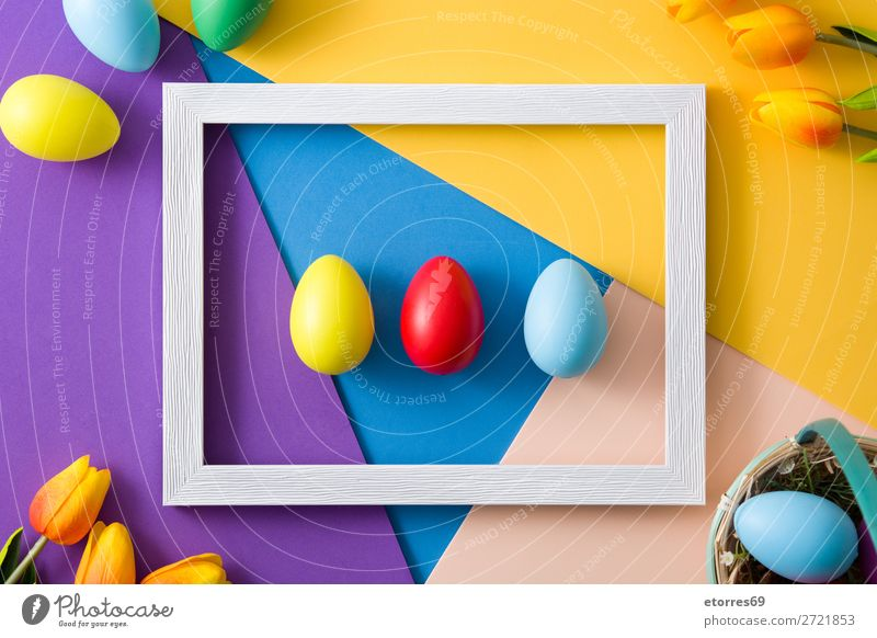 Easter concept.wooden frame with easter eggs and tulips Egg Neutral Background Background picture Vacation & Travel Feasts & Celebrations Public Holiday Spring