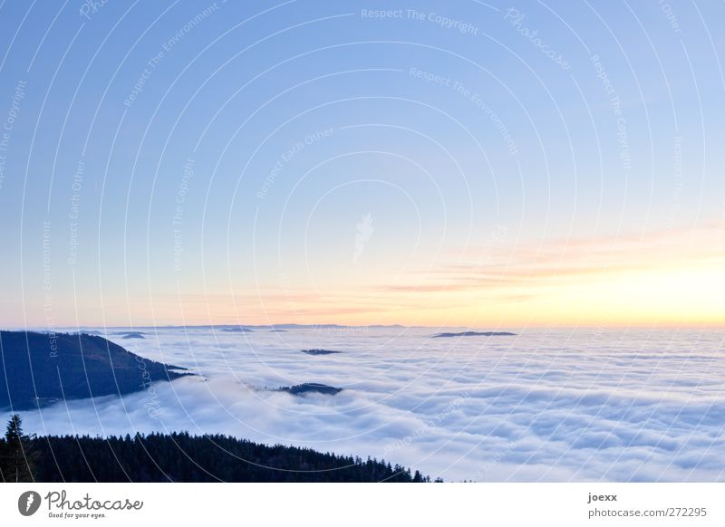 cheerful to cloudy Nature Sky Clouds Horizon Sunrise Sunset Beautiful weather Forest Mountain Peak Free Infinity Bright Tall Blue Yellow Black Calm Hope Belief