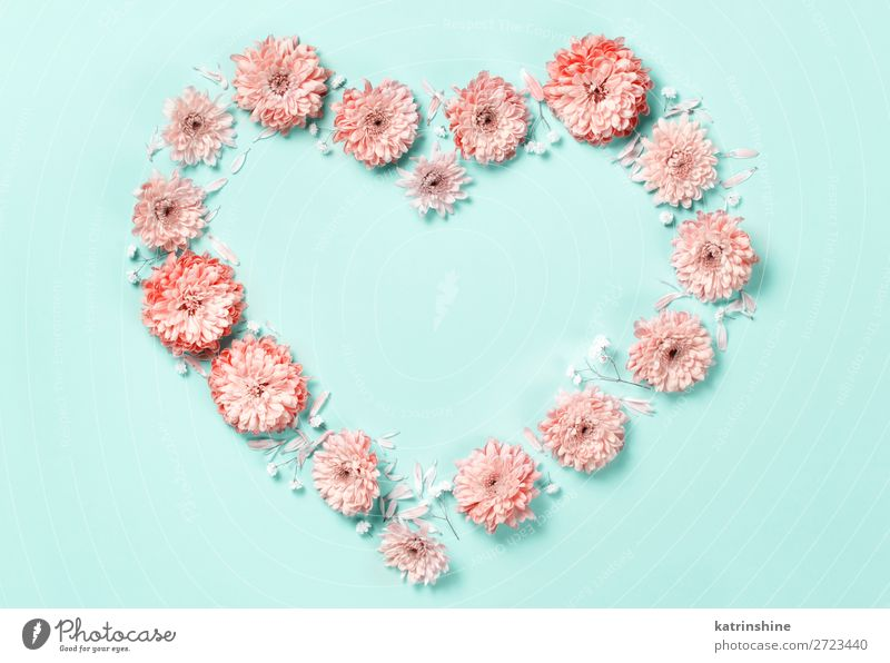 Heart symbol made of coral flowers Design Decoration Wedding Woman Adults Mother Art Flower Above Pink Creativity background Card composition Conceptual design
