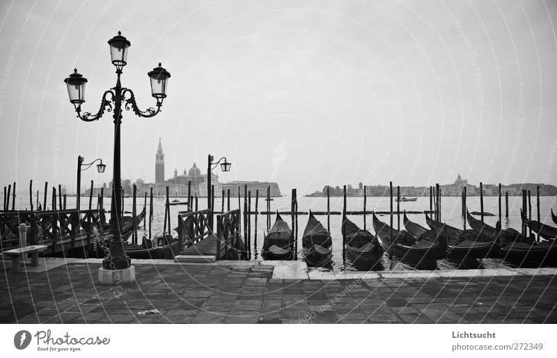 Thoughts on Venice Vacation & Travel Tourism City trip Ocean Island Civilized people cultural holiday San Marco Italy Veneto Europe Port City Old town Deserted