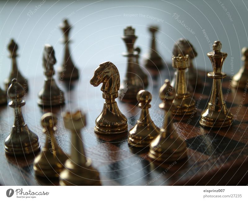 chess Chessboard / game Chess piece