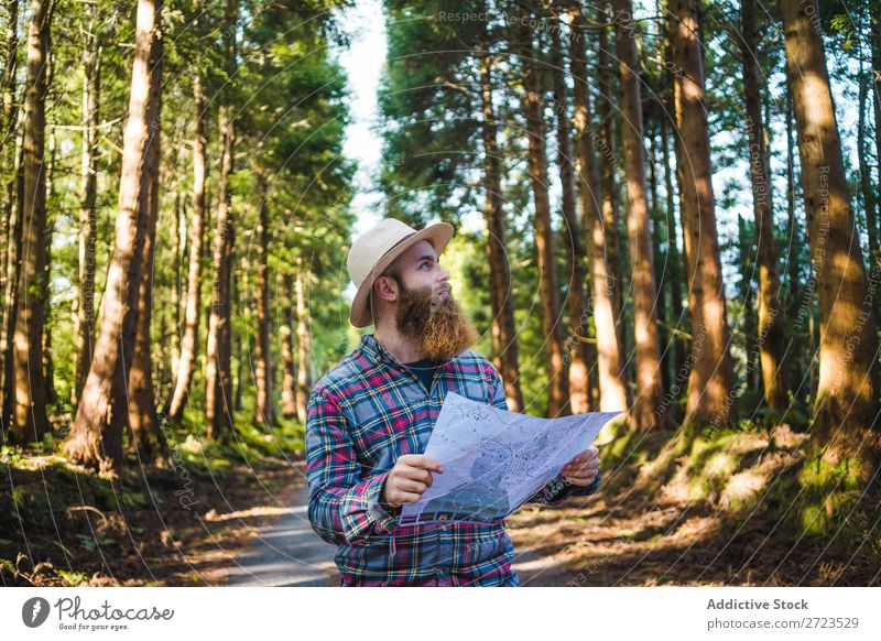 Man navigating on road in woods Tourist Nature Navigation Sunbeam Street using browsing bearded Forest Green Vacation & Travel Adventure Landscape Hiking Azores