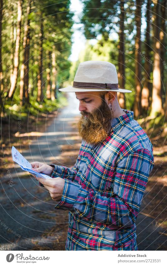 Man navigating on road in woods Tourist Nature Navigation PDA Sunbeam Street using browsing bearded Forest Green Vacation & Travel Adventure Landscape Hiking