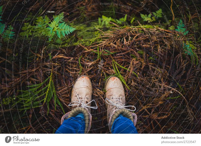 close-up of some boots in the woods Crops Forest Autumn Human being Nature Legs Footwear Close-up Partially visible Park Leaf Exterior shot Feet Boots