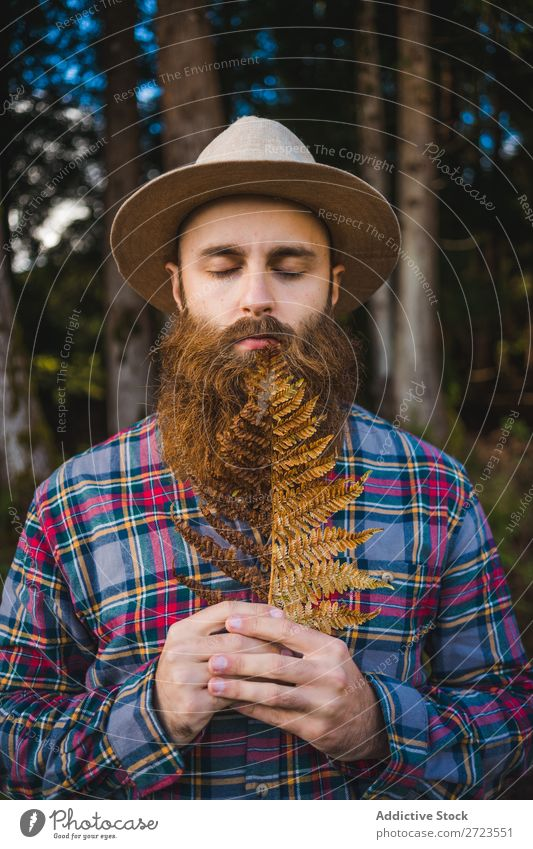 Man with brown leaf in beard Tourist Nature Leaf Brown Conceptual design Hat