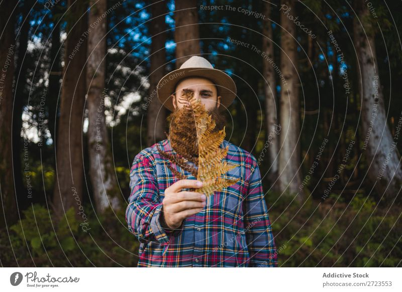 Man with brown leaf in beard Tourist Nature bearded Leaf Brown Conceptual design Hat Forest Green Vacation & Travel Adventure Landscape Azores Hiking