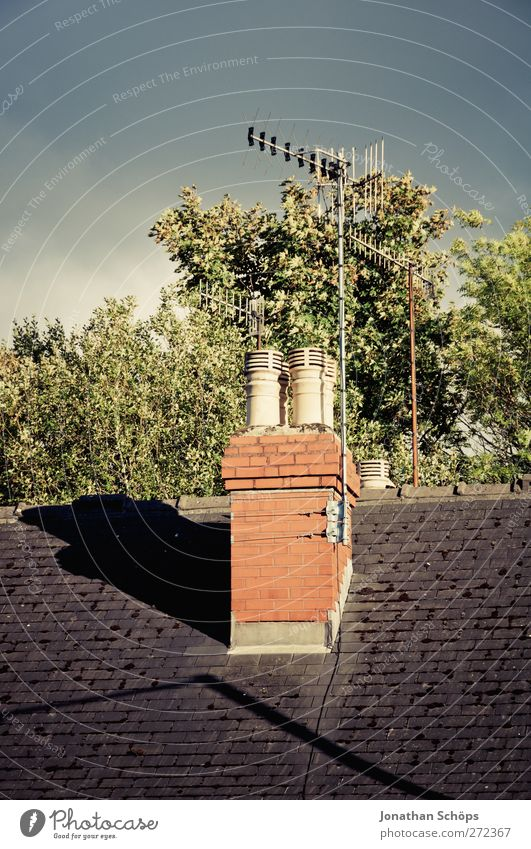 British roofs II England Great Britain Town Outskirts House (Residential Structure) Detached house Esthetic Roof Chimney Antenna Tree Treetop Sky English Shadow