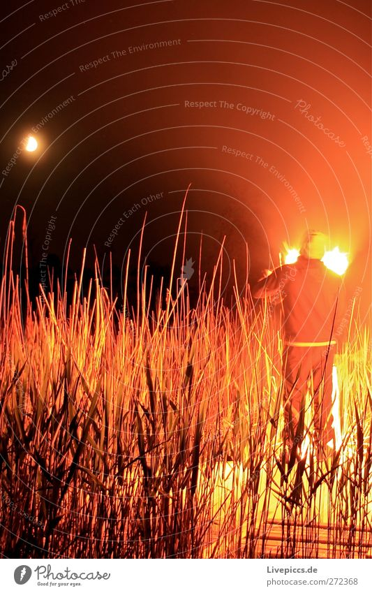 To the Boddenhof Human being Masculine Man Adults Body 1 Nature Landscape Sky Moon Plant Bushes Lakeside Illuminate Fire Colour photo Exterior shot Experimental
