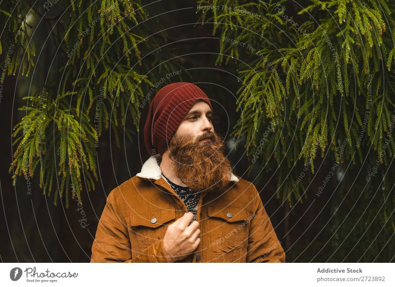 Bearded man standing at green tree Tourist Nature Man Tree Green Forest Vacation & Travel Adventure