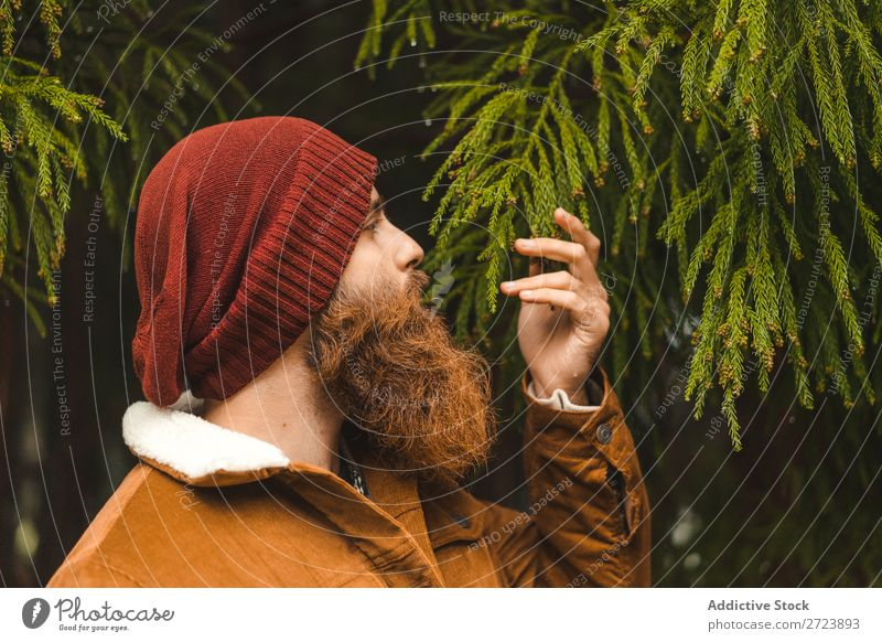 Bearded man standing at green tree Tourist Nature Man bearded warm clothes fir Tree Green Forest Vacation & Travel Adventure Landscape Hiking Azores
