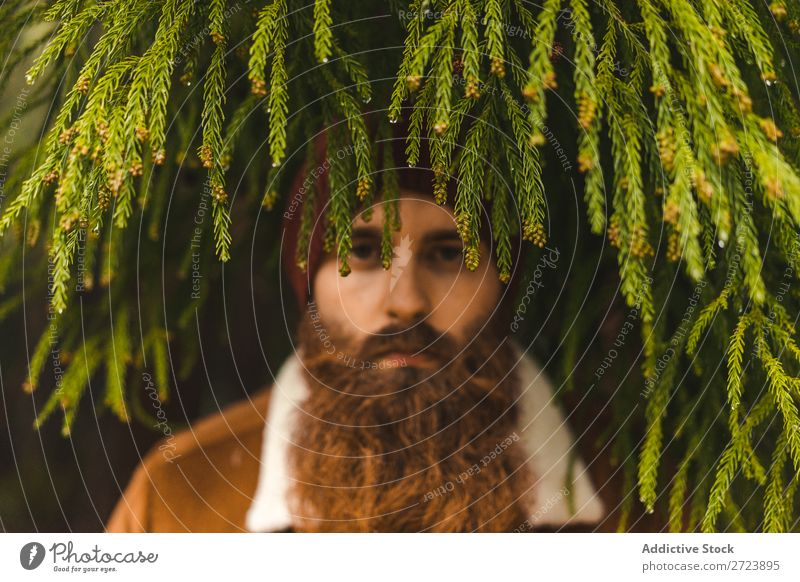 Bearded man standing at green tree Tourist Nature Man bearded warm clothes fir Tree Green Looking into the camera Forest Vacation & Travel Adventure Landscape