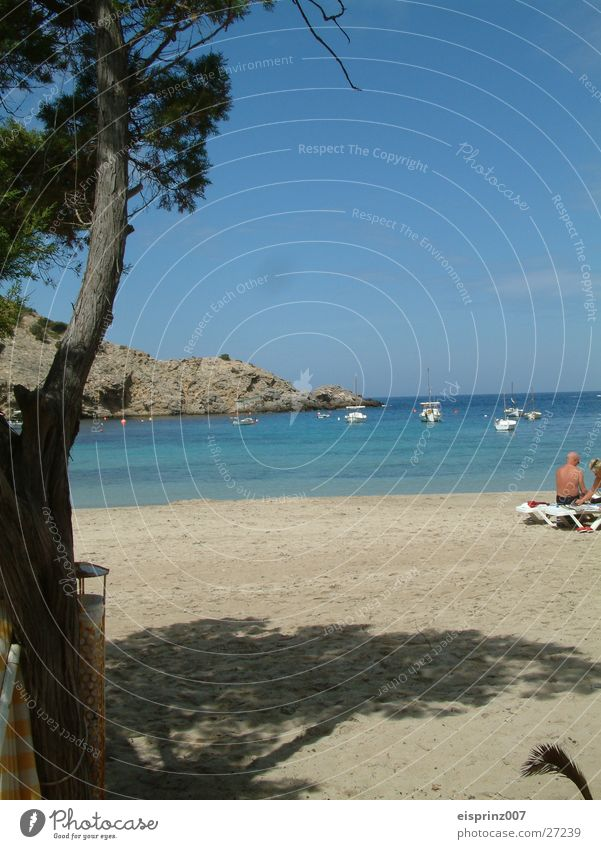 Water Ocean Beach Bay Sailboat Ibiza