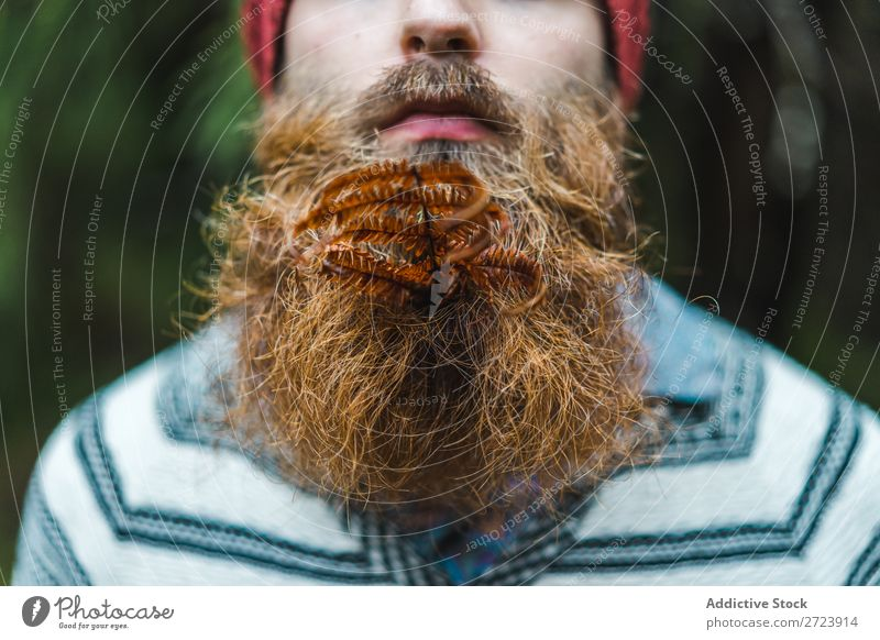 Adult man with branch in beard Tourist Forest Man Green bearded Branch Leaf Nature Vacation & Travel Tourism Lifestyle Action Leisure and hobbies Human being