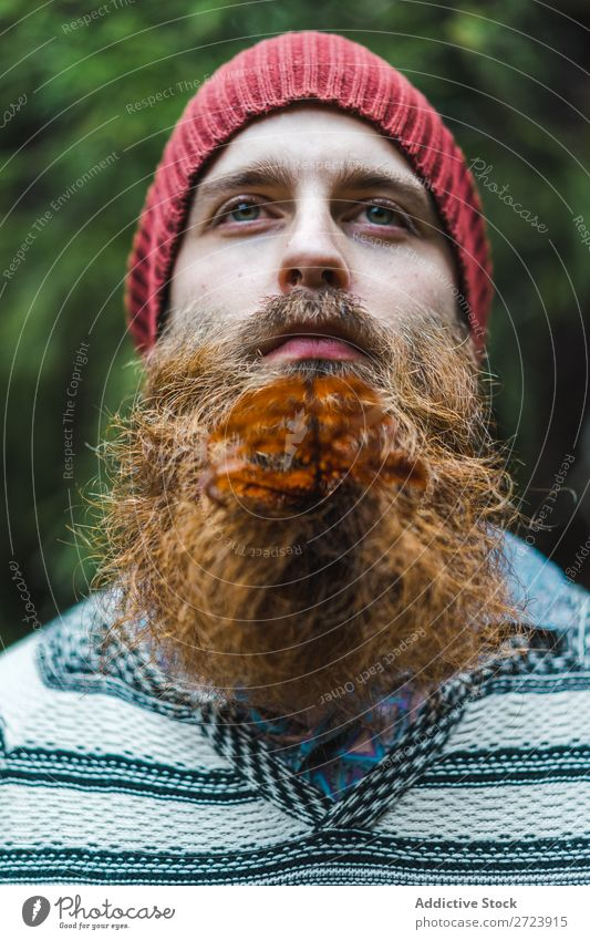 Adult man with branch in beard Tourist Forest Man Green bearded Branch Leaf Looking away Nature Vacation & Travel Tourism Lifestyle Action Leisure and hobbies