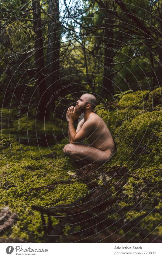 Man sitting on green moss Naked Forest Youth (Young adults) Torso Natural Moss Sit Park Model handsome Adults Nature Wood shirtless Strong Attractive Muscular