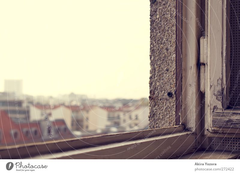 Watching the World outside Town Capital city Downtown Skyline House (Residential Structure) High-rise Building Wall (barrier) Wall (building) Window Roof Stone