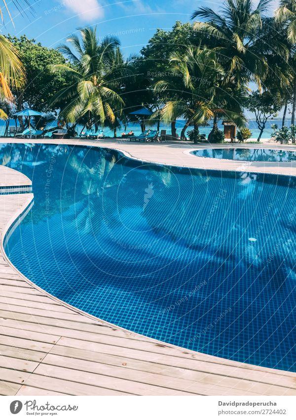 Maldives island luxury resort swimming pool Vacation & Travel Lagoon Island Idyll Luxury scenery Coast Tropical Resort Paradise Exotic Reef Vantage point Atoll