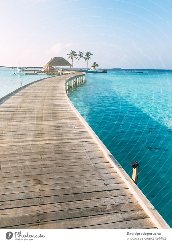 Maldives island luxury resort wooden pier Jetty Vacation & Travel Vacation home Ocean Lagoon Island Idyll Luxury scenery Coast Tropical Paradise Exotic Reef