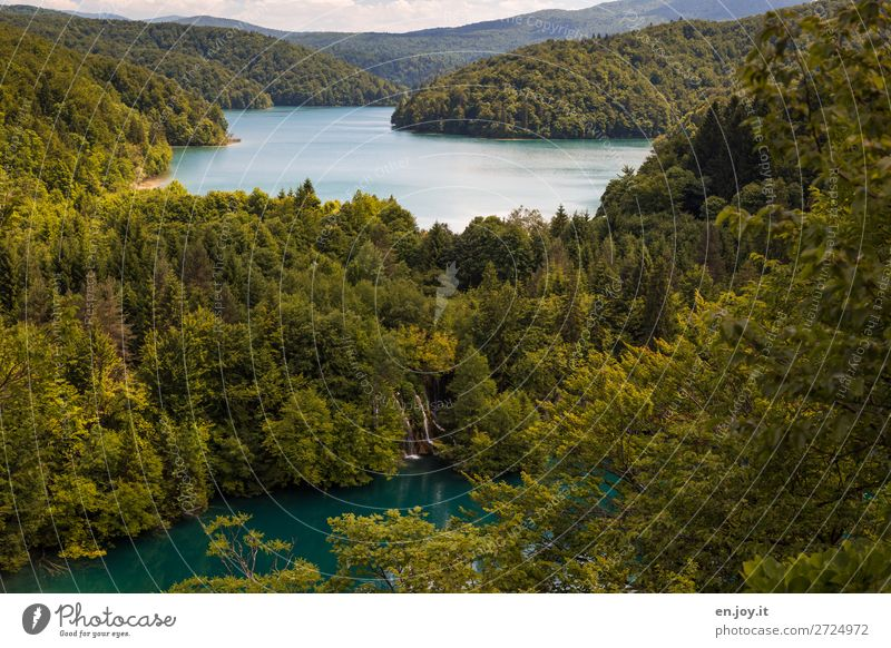 Vacation & Travel Nature Summer Green Landscape Relaxation Forest Tourism Lake Trip Idyll Climate Hill Summer vacation Sustainability Waterfall