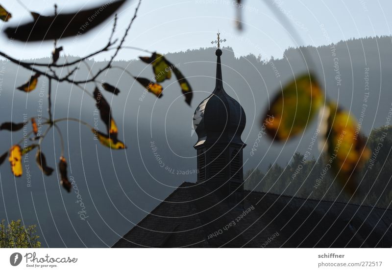 Tree Leaf Forest Mountain Autumn Church Beautiful weather Peak Hill Village Manmade structures Crucifix Autumn leaves Slope Cliche Church spire