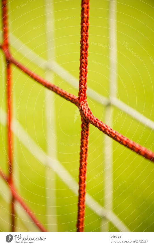 With net and double bottom Net Green Red Sports Symmetry Soccer Goal 2 Reduplication Synthesis Knot Node Bright background Colour photo Exterior shot Close-up