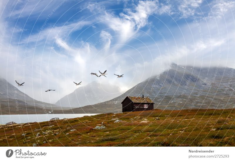 Sky Vacation & Travel Nature Summer Landscape House (Residential Structure) Relaxation Clouds Mountain Spring Meadow Grass Freedom Lake Bird Rock