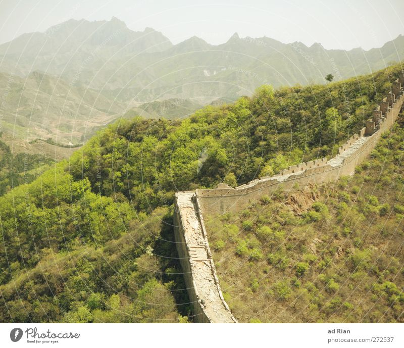demarcation Nature Landscape Spring Beautiful weather Tree Grass Bushes Field Forest Hill Rock Mountain China Ruin Tower Manmade structures Architecture