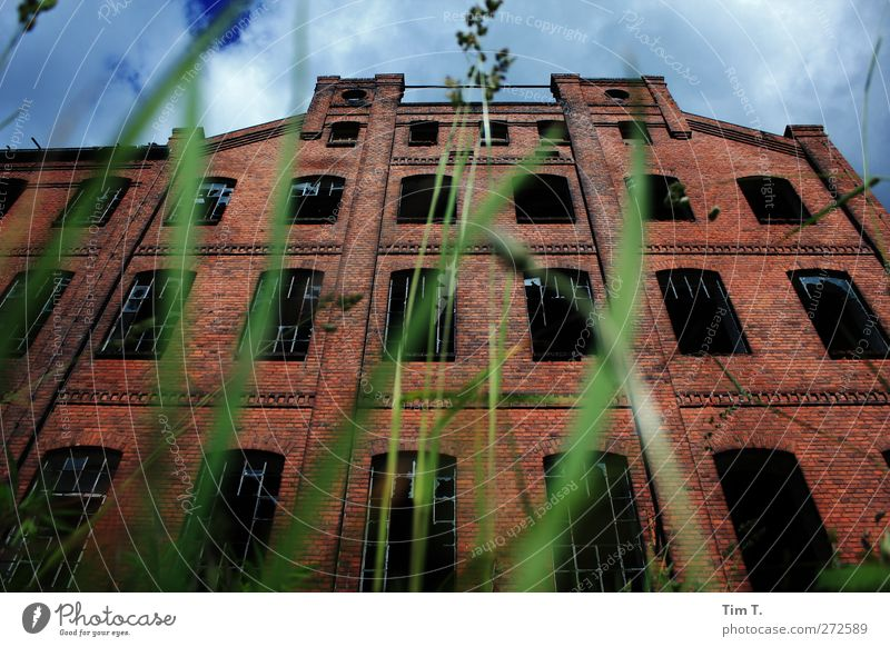 Weaving in sleep Grass Village Deserted House (Residential Structure) Industrial plant Factory Ruin Manmade structures Building Architecture Wall (barrier)