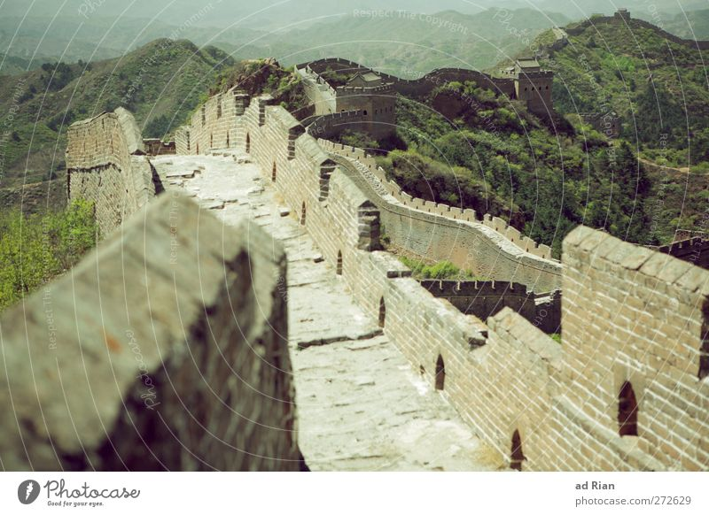 an up and down! Environment Landscape Cloudless sky Spring Beautiful weather Tree Grass Bushes Meadow Forest Hill Peak China Skyline Deserted Palace Ruin Tower