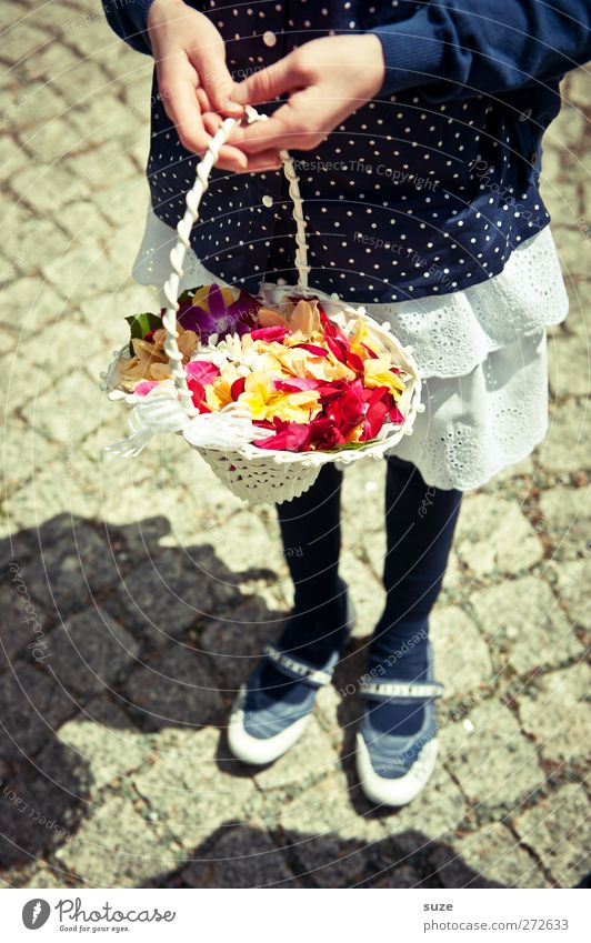 Human being Child Hand Girl Feminine Happy Blossom Feasts & Celebrations Footwear Infancy Future Wedding Dress To hold on Kitsch Cobblestones